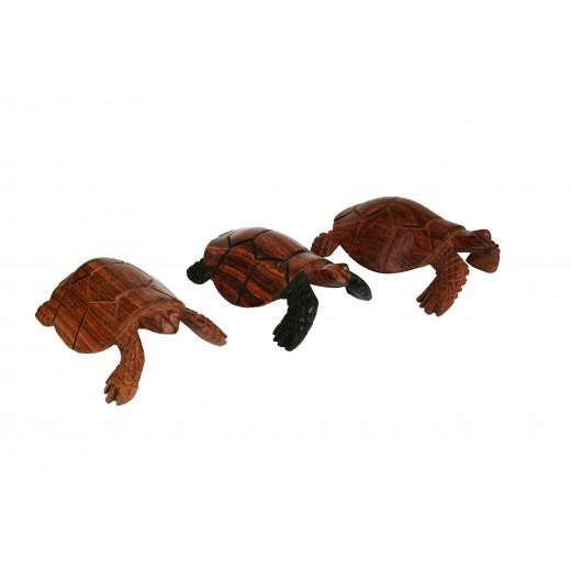 soška želvy