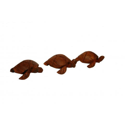 soška - želva