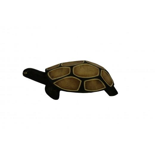 Soška – želva malá, Uganda