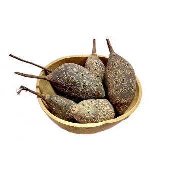 Suché plody - semena